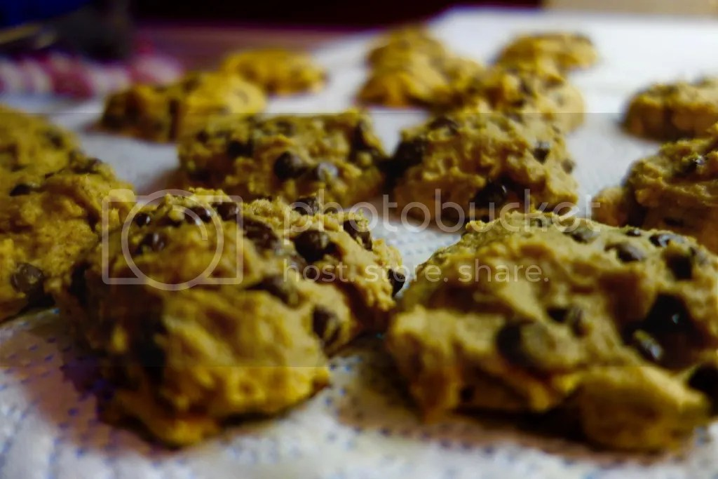photo Pumpkin Chocolate Chip Cookies 11_zpsfbnmq4nr.jpg