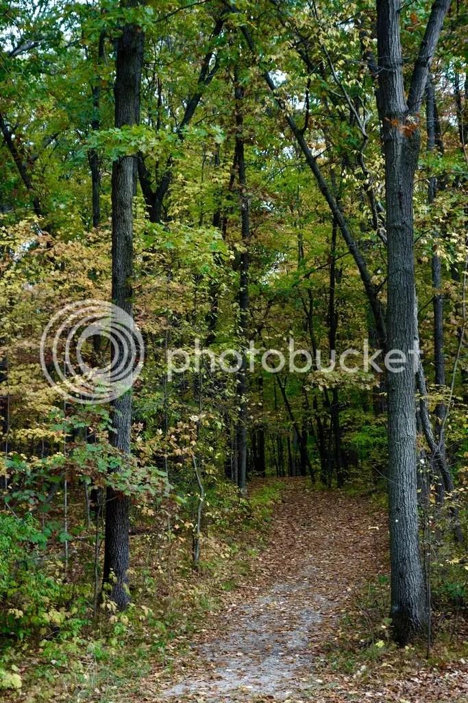 photo Stony Creek Park MI 13_zpssmc8wbh6.jpg