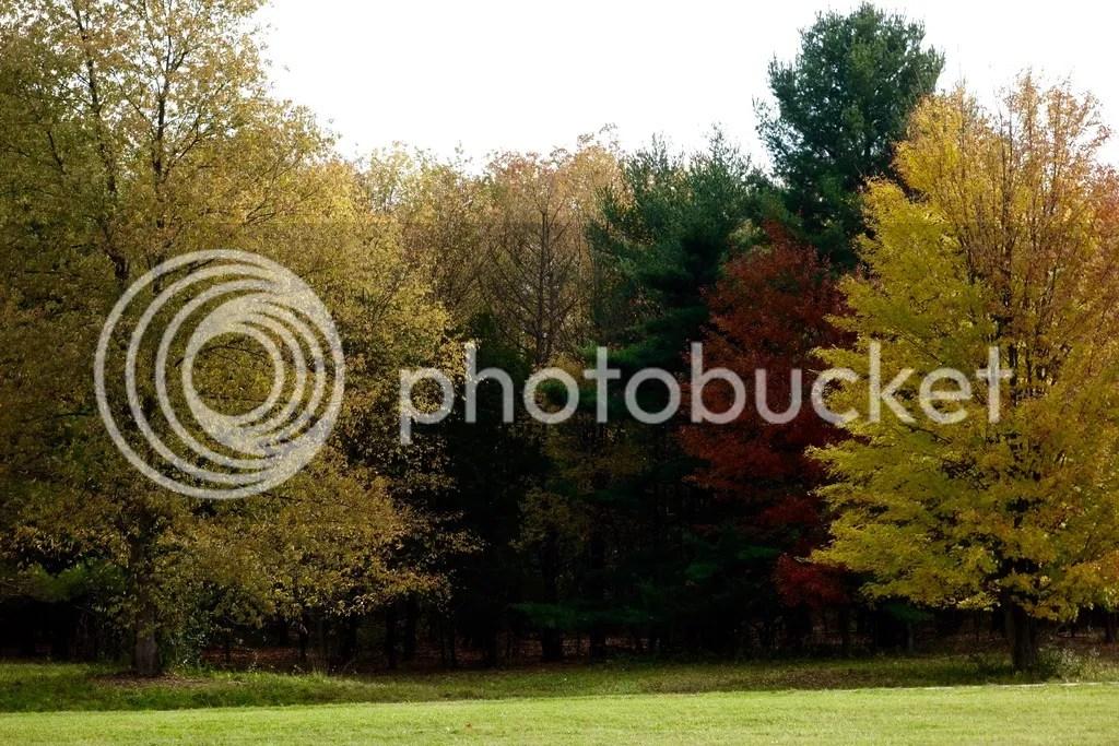 photo Stony Creek Park MI 9_zpsavfwdjd7.jpg