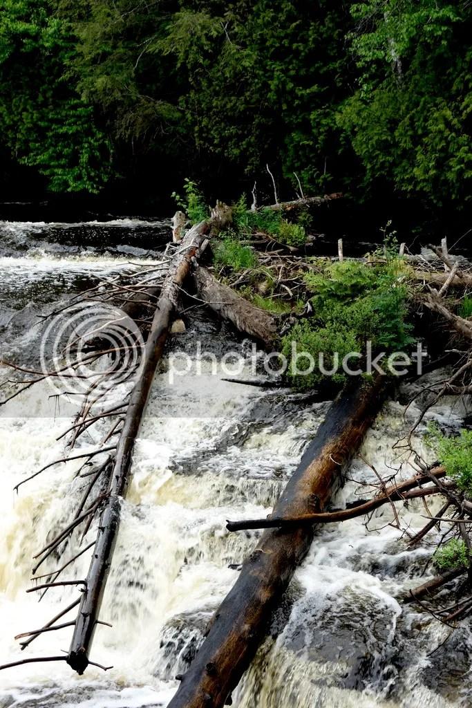 photo Tahquamenon Waterfall_zpsqm3wca4d.jpg