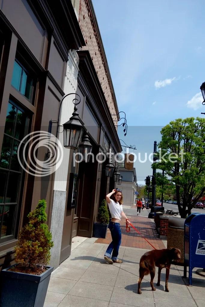 photo Downtown Grosse Pointe_zpsd4iv405c.jpg