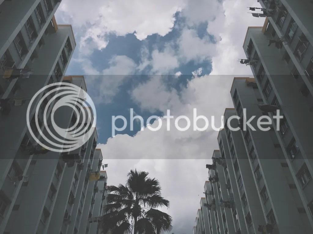 photo IMG_8612_zpsfdgrxedg.jpg