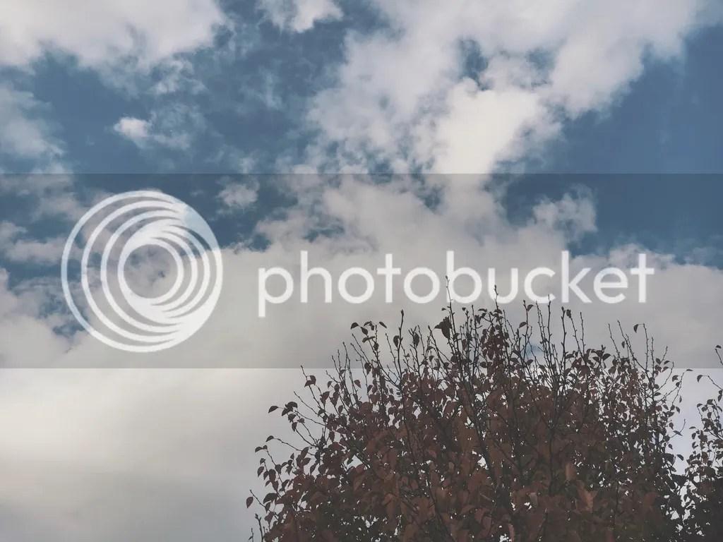 photo IMG_9070_zps6e0ni77k.jpg