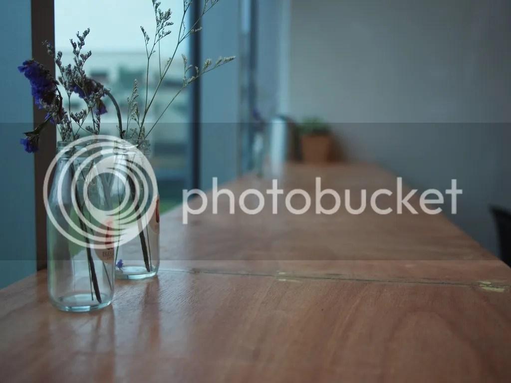 photo P1010050_zpsx4gszcu1.jpg