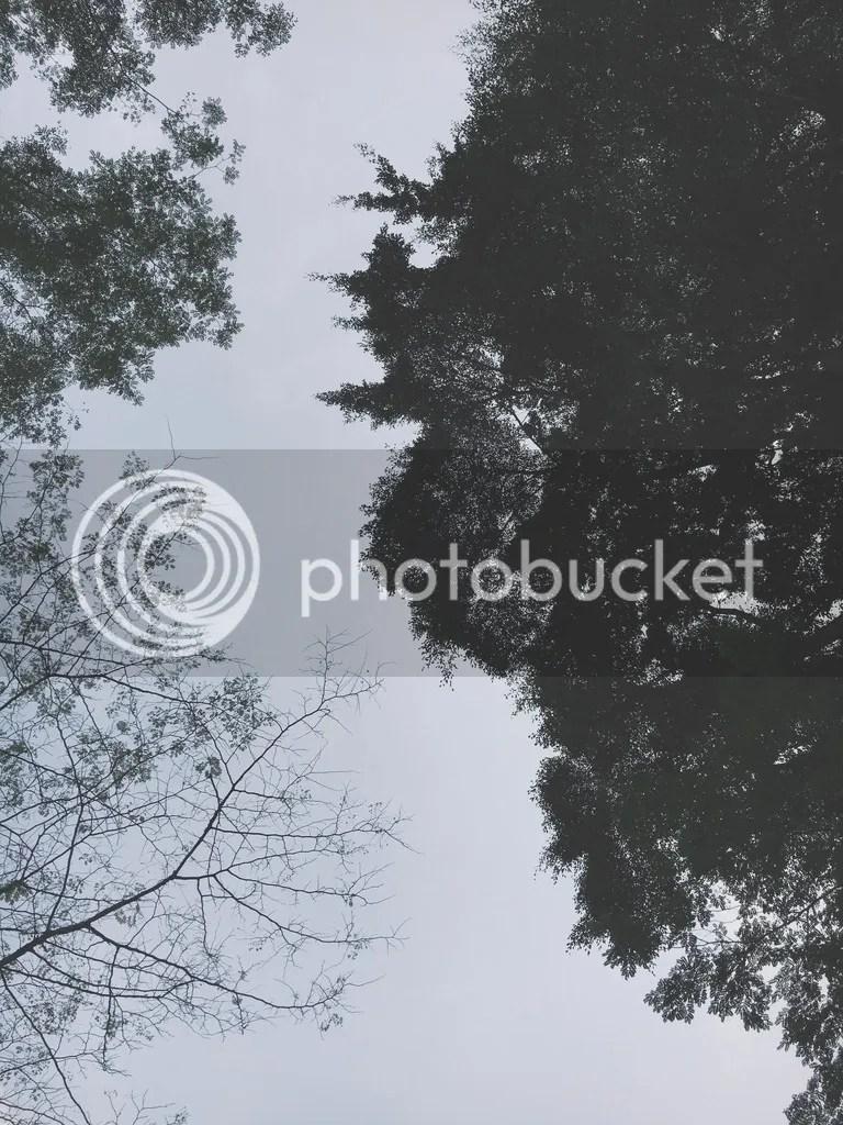 photo Skys Path_zps3mr8zlkw.jpg
