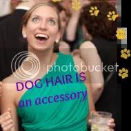 Dog Hair Is An Accessory