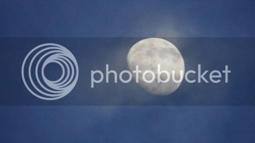 photo DSC07456_zps358b5fbb.jpg