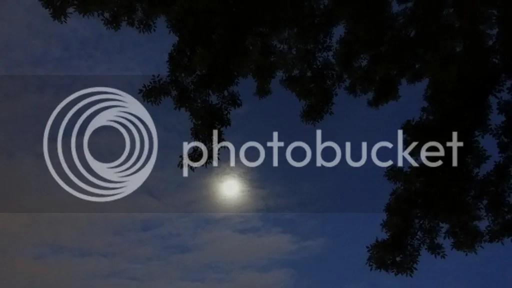 photo DSC07496_zps3993cb3e.jpg