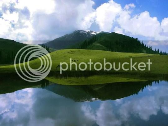 photo 548688_109808115846032_1209658821_n_zpsc4c317c4.jpg