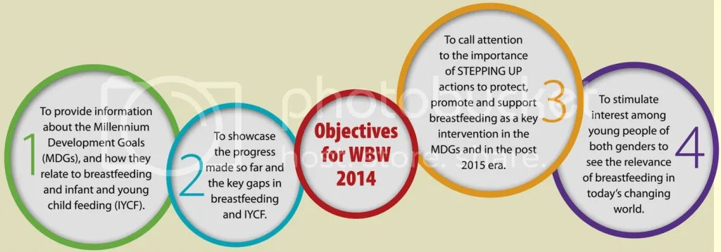 photo wbw2014-objectives_zpstzhleu4m.png