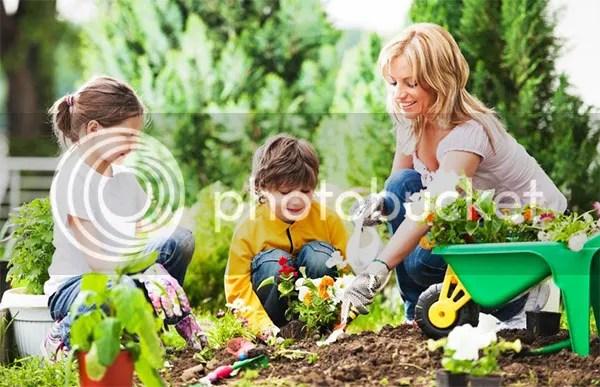 Ways To Entertain The Kids In The Garden