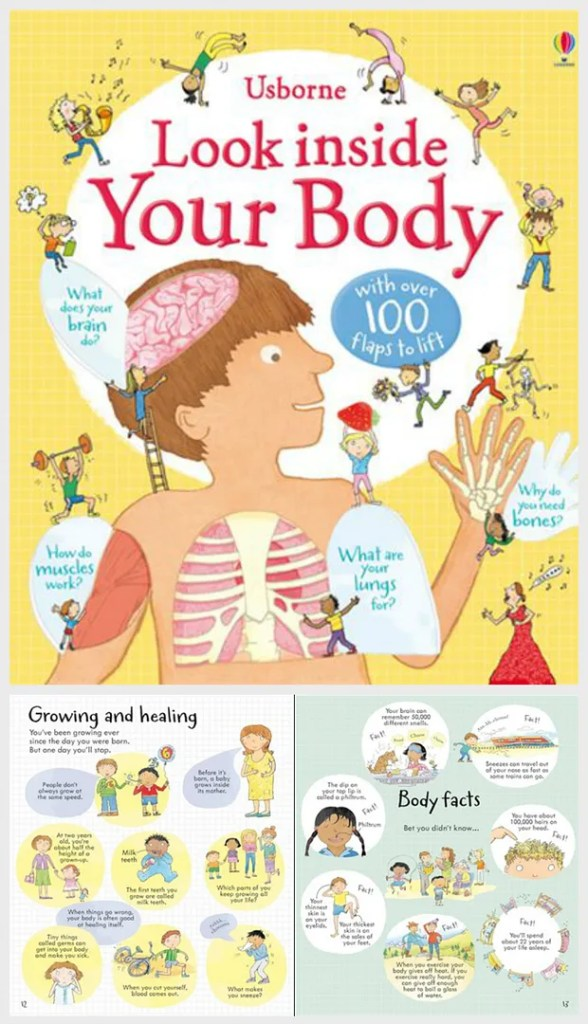 Look Inside: Your Body - educational gift guide for preschoolers
