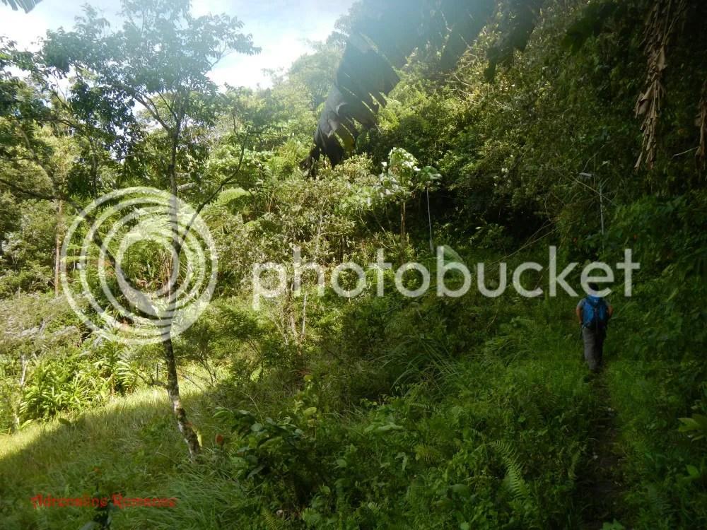 Lunatrek 12 Cebu Mountaineering Alliance at Mt. Manunggal at Mt. Manunggal
