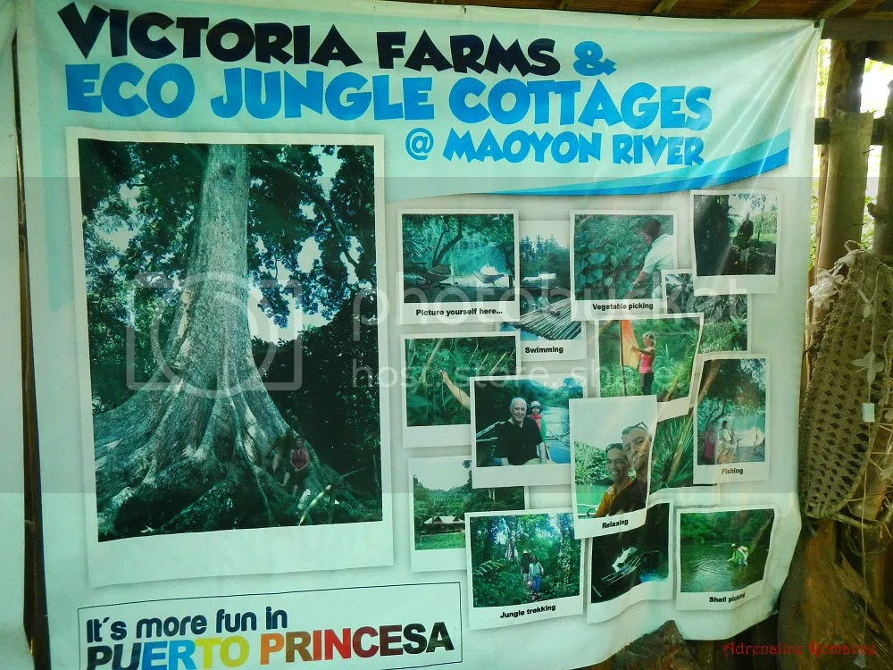 Victoria Farms and Eco Jungle