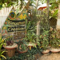 Puerto Princesa City Tour: Binuatan Creations