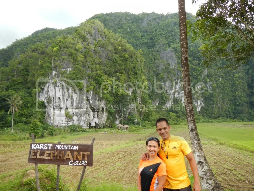 Elephant Mountain Karst Formation