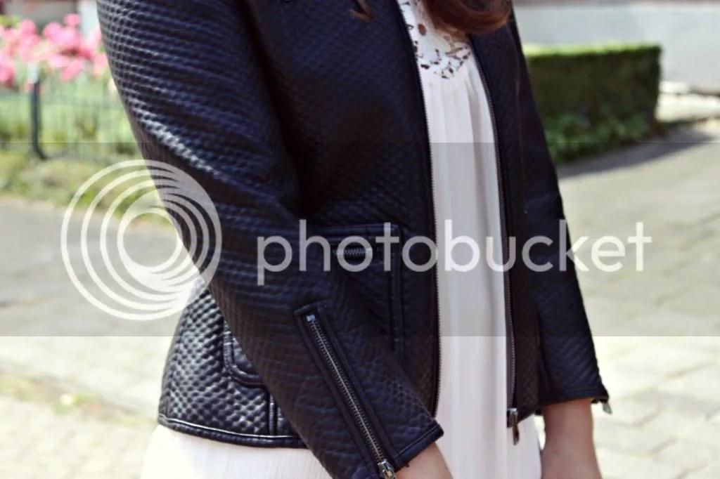 photo roses04_zps2c0efb84.jpg