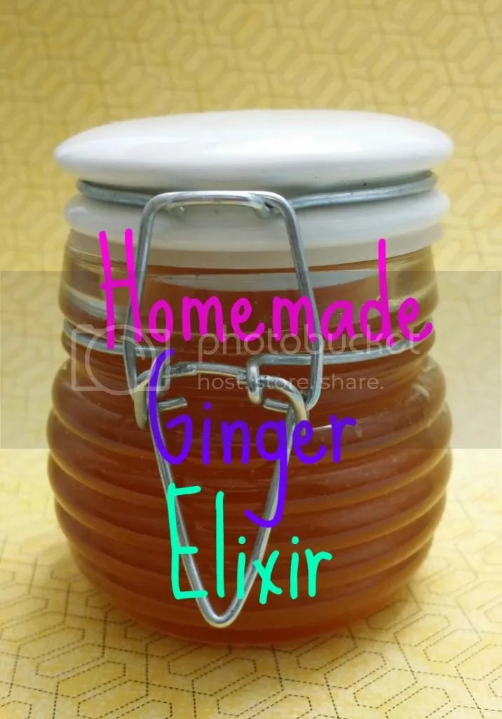Homemade Ginger Elixer photo 1420352396_20141210_222701-1-picsay_zpsdv3byltl.jpg