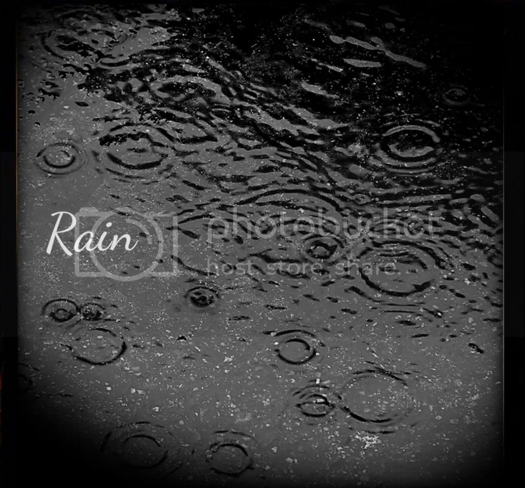 photo rain_zps22cea2f8.png