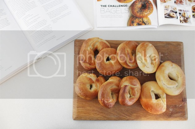 photo Homemade Bagels 8_zpsnlqqtte1.jpg