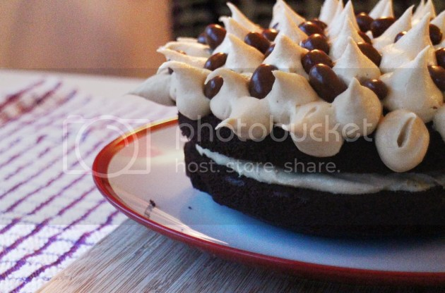 photo Chocolate Cake with Peanut Butter Frosting 5_zps8vxkg5c4.jpg