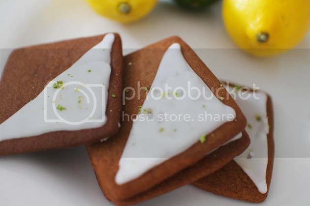 photo Ginger amp Lime Biscuits 9_zpstufppxja.jpg