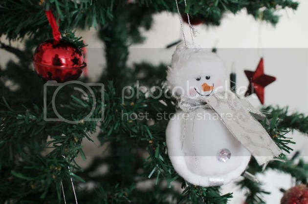 photo Christmas Decorations 2015 2_zpsetsvo3rw.jpg