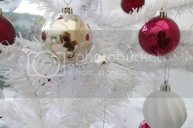 photo Christmas Decorations 2015 7_zps87tlur1c.jpg