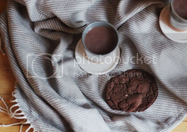 photo Lucy Bakes Chocolate Chip Cookies  14_zpsea6l2zth.jpg