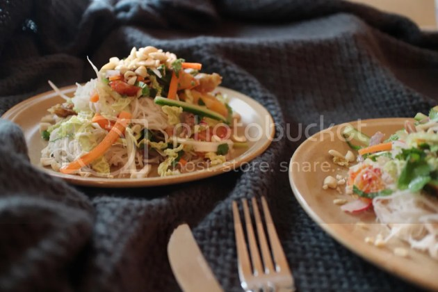 photo Blood Orange Noodle Salad with Duck or Turkey 3_zps8gaf5blq.jpg