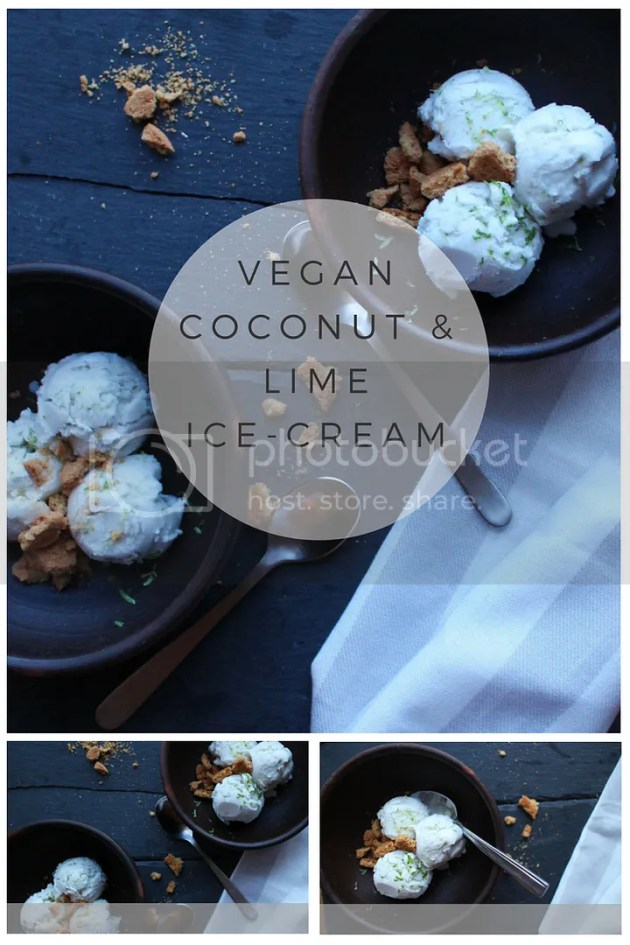 photo Vegan Coconut IceCream_zps5tu770nn.jpg