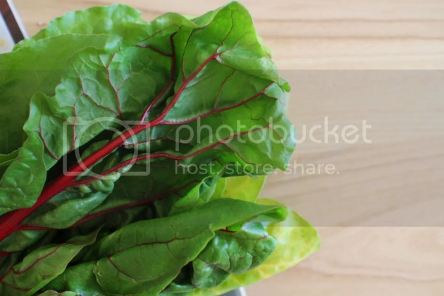 photo Green Vegetable Tart  5_zpspwcqv2m1.jpg