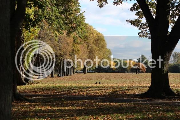 photo Autumn Walks 2_zps48ypyrr5.jpg