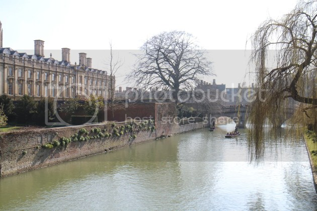 photo Spring Afternoon in Cambridge 5_zpsqidup60i.jpg