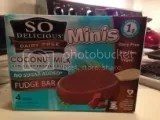 So Delicious Dairy Free Minis Coconut Milk No Sugar Added Fudge Bars