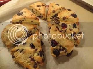 Gluten-Free Blueberry and Dark Chocolate Scones