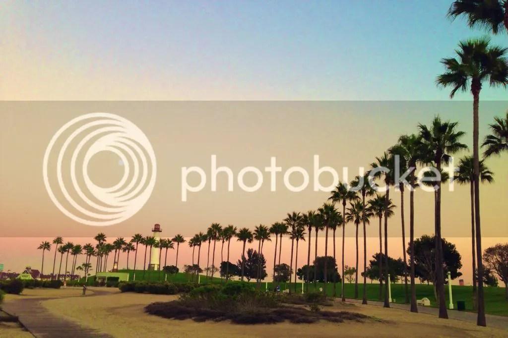 photo IMG_7116_zpsd63d9cfd.jpg