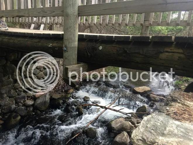 photo bridge4_zpsdqxk8xg2.jpg