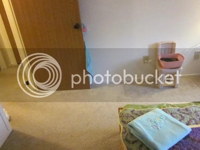 photo dresserwallafter2_zpse9b5cd00.jpg