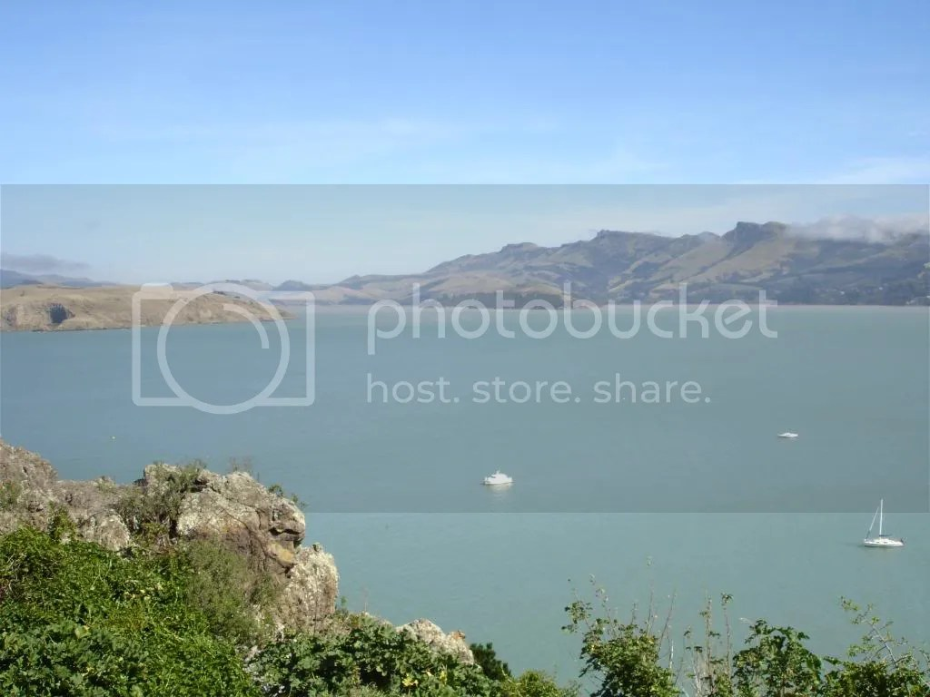 Lyttelton Harbour from Rapaki with Quail Island in the middle