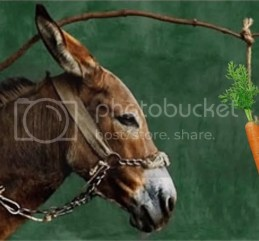 photo donkey-and-carrot_zps5bv24wum.jpg