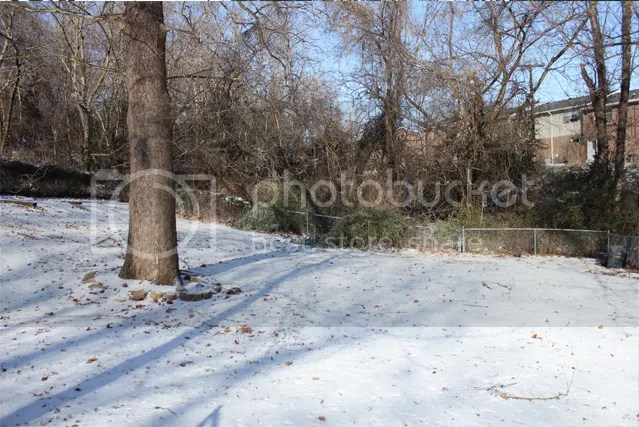 photo backyardsnow1_zps1039c53b.jpg