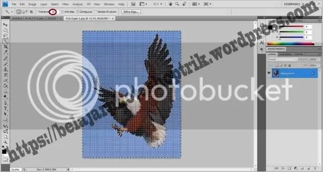 Belajar Photoshop Seleksi Dengan Menggunakan Magic Wand Tool