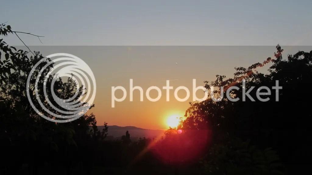 photo IMG_6942_zpstwrs1hqz.jpg