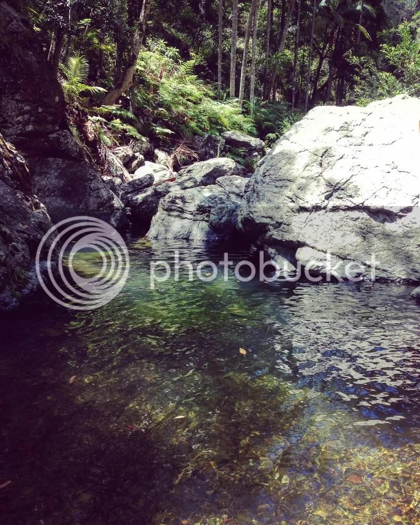 photo IMG_2053_zpsoyqqx47n.jpg