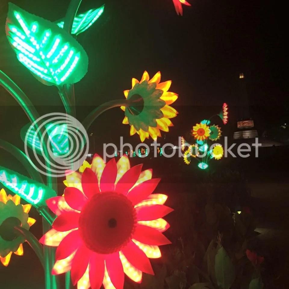 photo 11951839_10153484254606181_6828422399326967103_n_zps3rqr7z9a.jpg