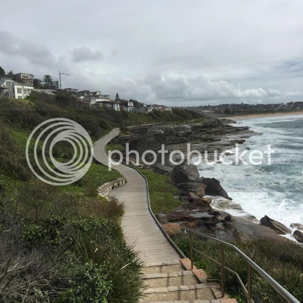 photo 8 Curl Curl Beach South_zps0n2j8ooe.jpg