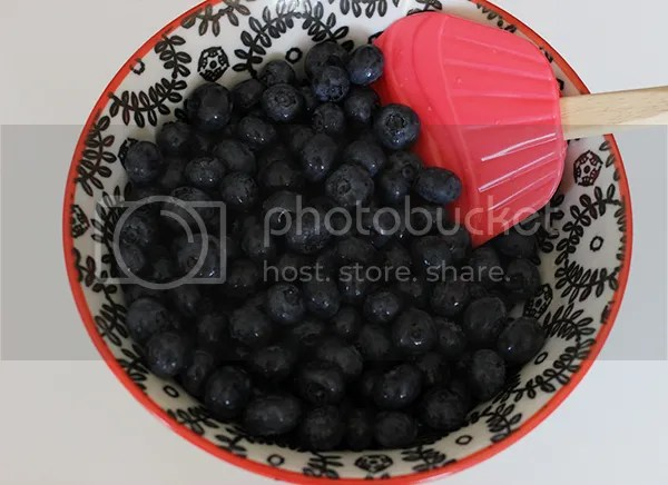 photo blueberry3_zps21bcafcc.jpg
