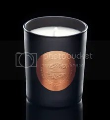 photo candle-new_zpsff3c9846.png