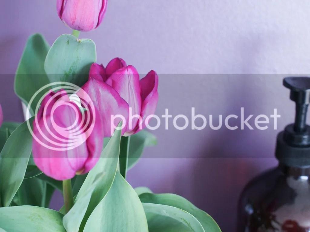 photo P1010305_zpsjoa51vd3.jpg